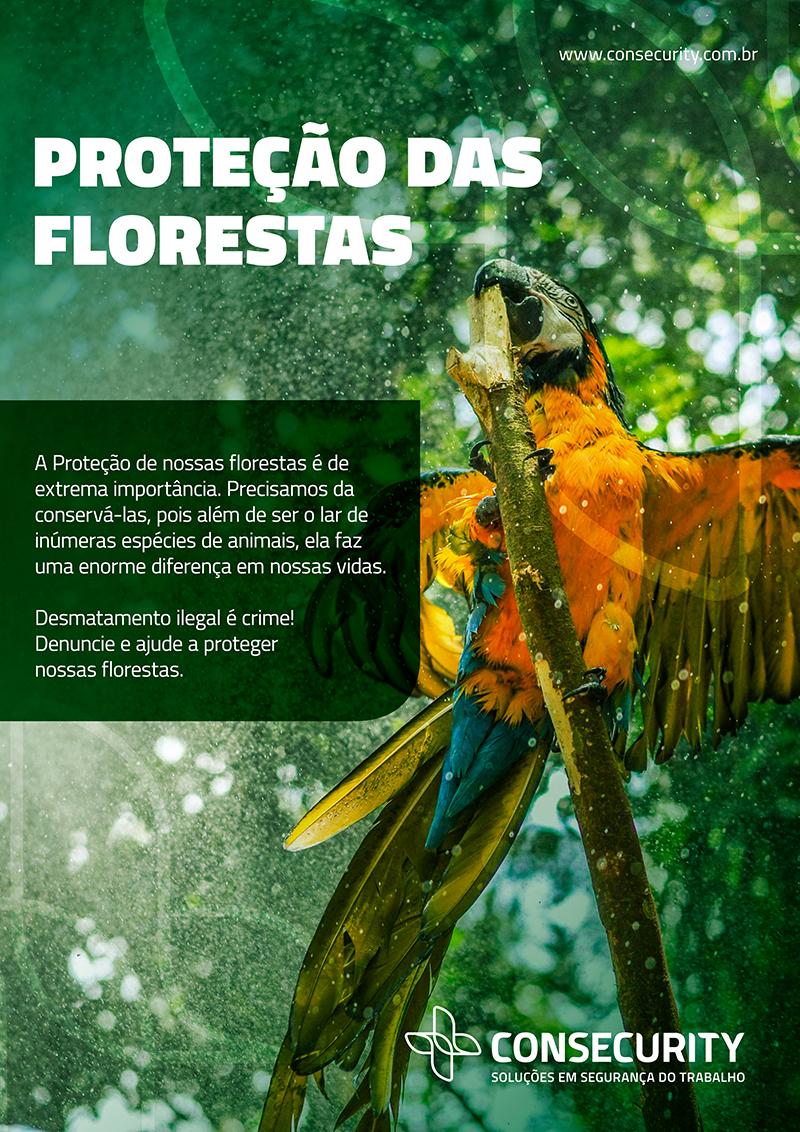 12_informativo_consecurity_florestas